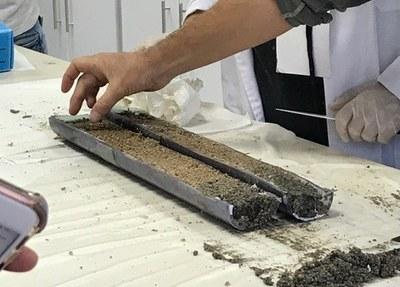 Sediment core in the lab