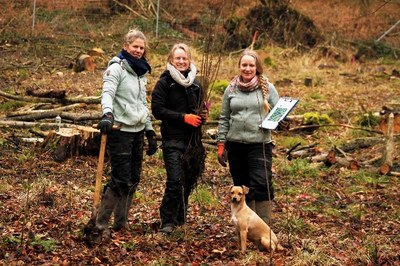 3 scientists and dog stand in forest clearing