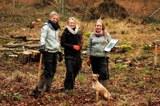 Pflanzung Harzhof